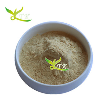 High Quality Weight Loss Hoodia Gordonii Extract Powder Buy