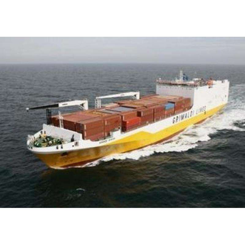shipping agency supply Cheap cost sea freight shanghai to sokhna