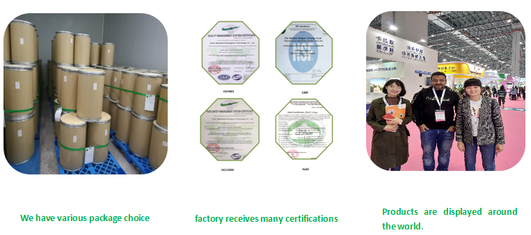 Tinggi Kualitas Farmasi CAS: 9012-76-4 Kitosan Bubuk