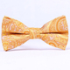Fashion Polyester Yellow Paisley Bowtie