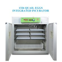 Hot Selling 1500 Quail Egg Incubator for Sale/Incubator for Quail Eggs