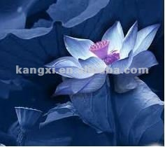 Blue Lotus Flower Extract Blue Lotus Flower Extract Supplier And