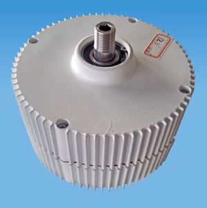 low rpm 300 w permanent magnet alternator for sale