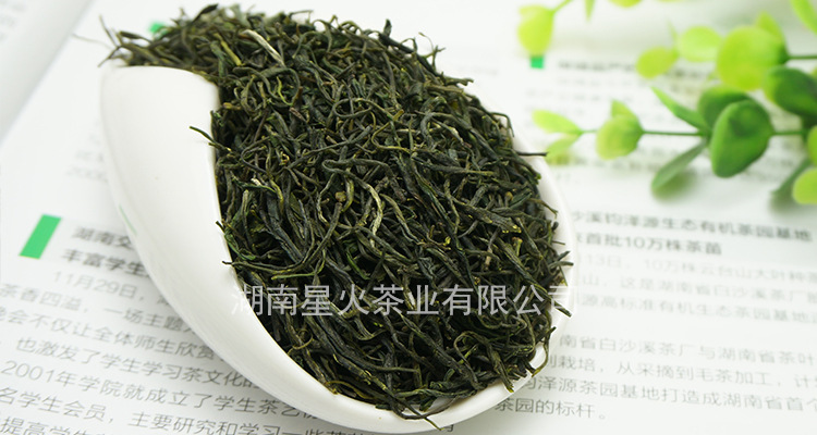 2016 new products refined Chinese tea gift twisted maojian green tea wholesale