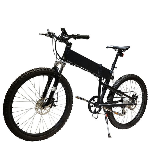 MINI 20 inch 250W foldable 36V electric bike