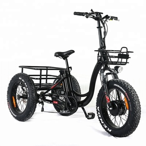 Best Quality 500w 48V Big Wheel Cargo Electric Tricycle for Adults