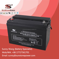 12 Volt 100AH Sealed Maintenance Free Lead Acid Dry Cell Battery AGM Batteries
