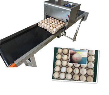 Simple and easy to operate egg pattern printer