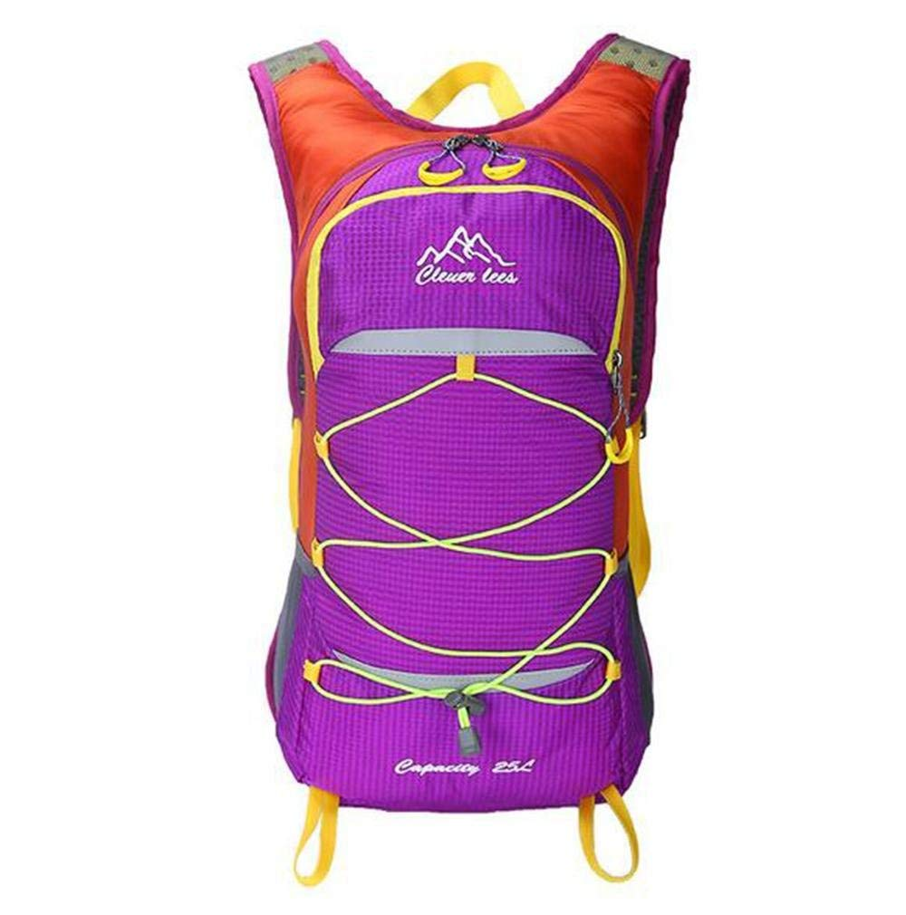 XUEXIN 25 L Backpacks Waterproof Dry Bag Cycling Backpack Recreational Cycling Camping/Hiking Cycling/Bike Mountain Bike/MTB Camping, purple