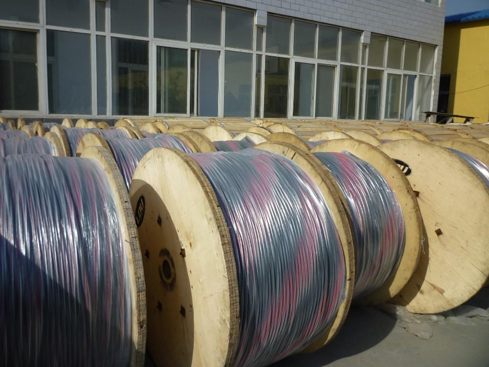 Aluminum Conductors Cross-linked Polyethylene (xlp) Insulation ...