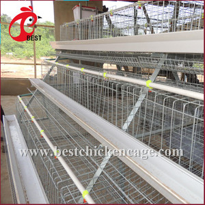 New Design South Africa Best Price Automatic Layer Chicken Cage For Sale