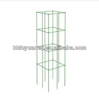 Fold Flat Square Tomato Cage - Buy Tomato Cage,Iron Tomato Cage ...