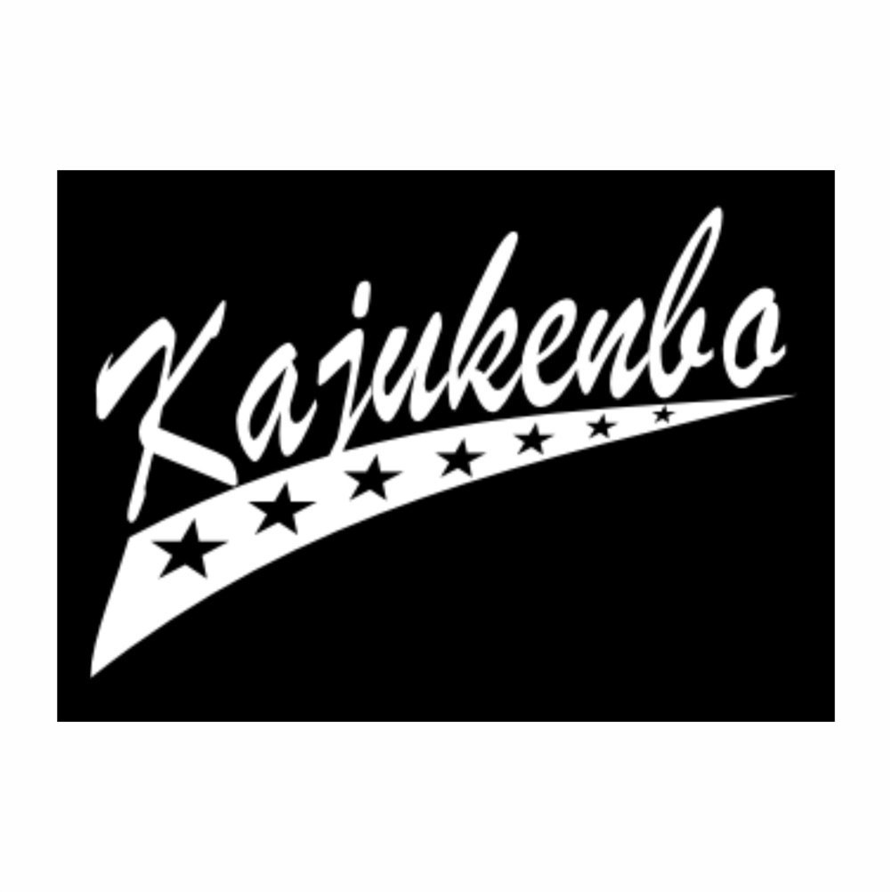 Teeburon Kajukenbo STAR Pack of 4 Stickers