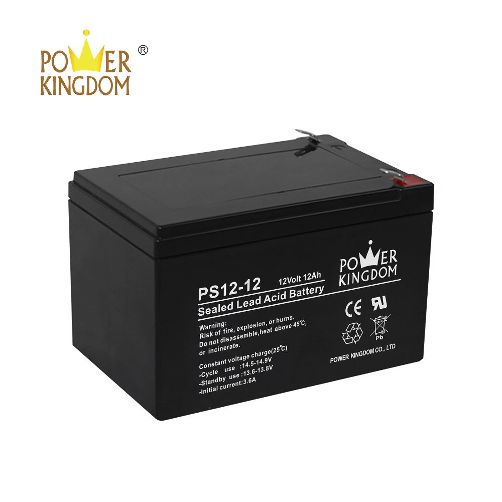 Power Kingdom no electrolyte leakage 6 volt deep cycle battery factory price-3