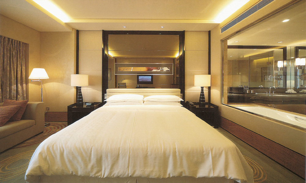 Luxury 4 5 star hotel project buy hotel project hotel for Luxury hotel project