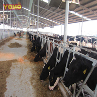 YOMO cattle barn equipment cattle headlock cow farm equipment
