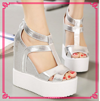 Hongkong silver bling 5cm platform wedges amazon women shoes
