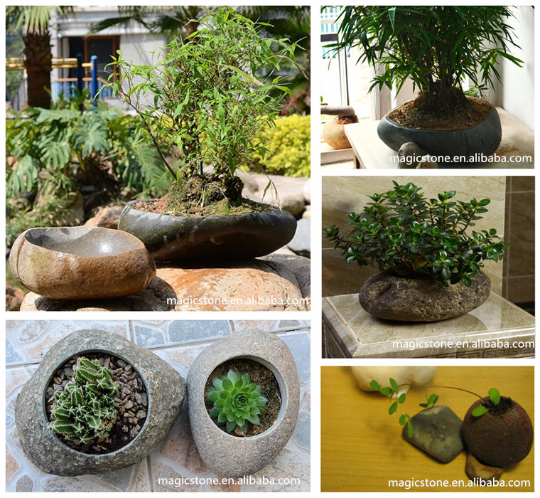 Unique Flower Plant Pots For Sale Buy Plant Pots Flower