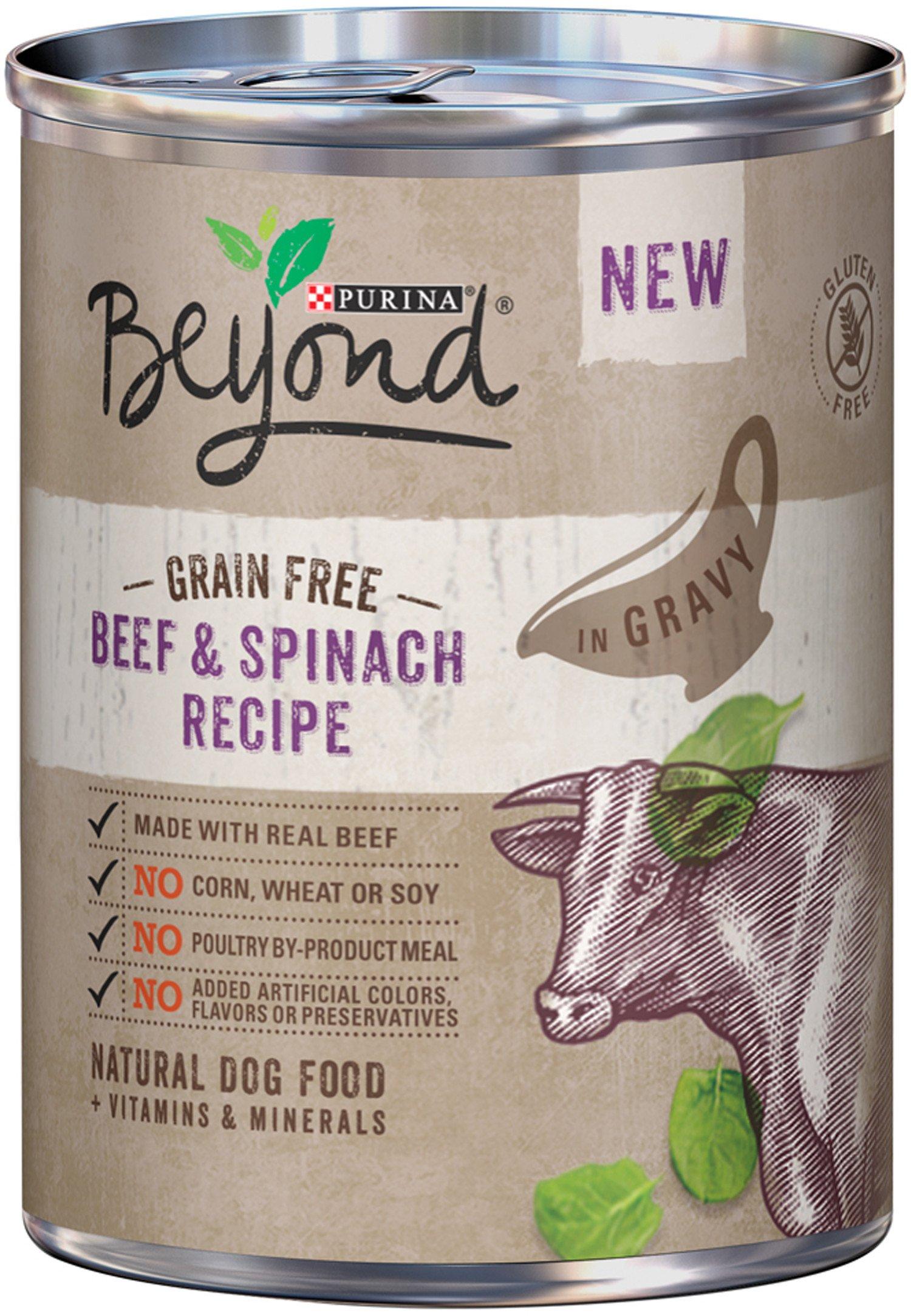 Purina Beyond Grain Free Adult Wet Dog Food