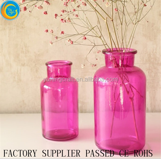 Stylish colorful Glass Bottle plant vase or moss terrarium clear flower vases