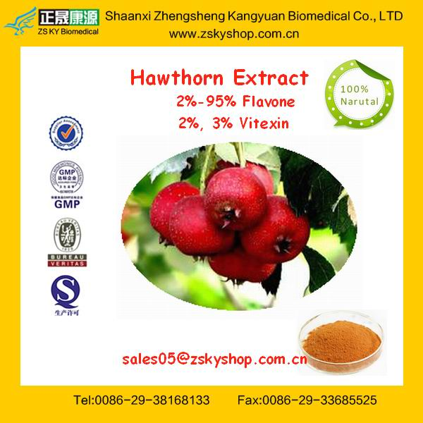 GMP Certificated Manufacturer supply 100% Pure Natural Hawthorn Berry Extract