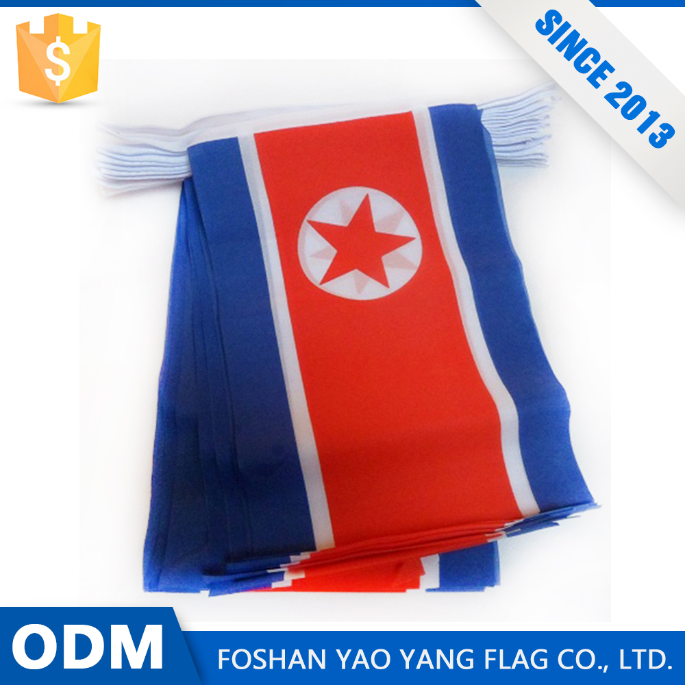 Factory Custom Personalized Polyester Fabric North Korea Bunting