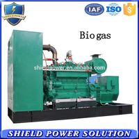 Newest gas small power 20kw biogas generator set