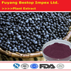 Ba Xi Mei Wholesale Top Quality Acai Berry Powder