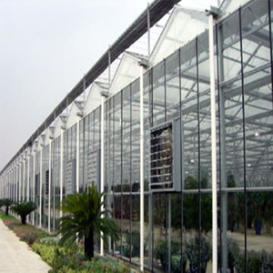 SELL 4 5 6 8 10 12mm tempered venlo glass greenhouse