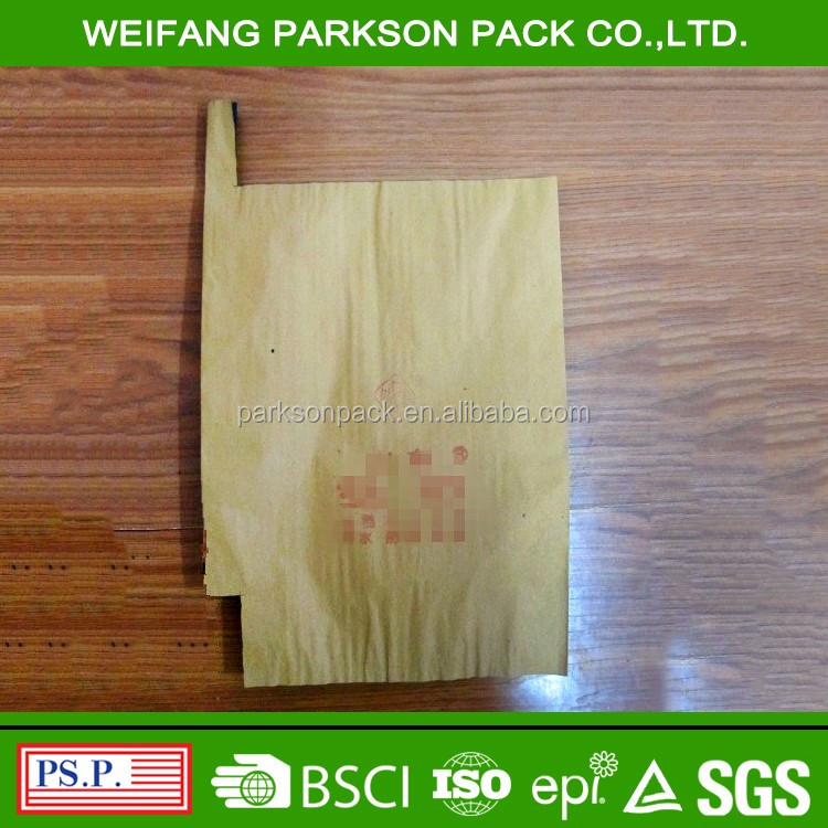 Excellent quality mango protection fruit growing paper bag