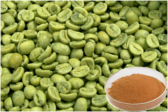 Leptin green coffee 1000 murah