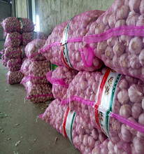 Frozen fresh garlic 5.0-5.5cm size