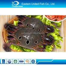 China Seafood Frozen Soft Shell Crab
