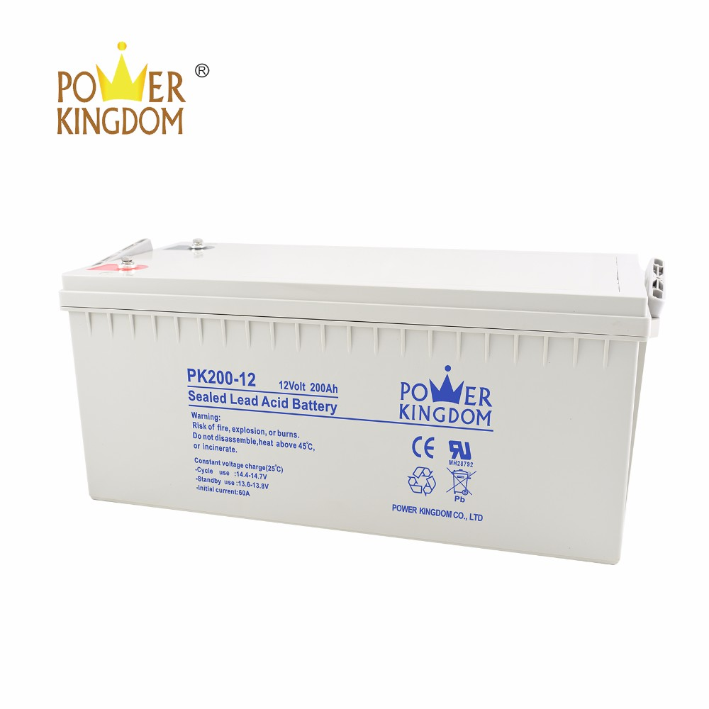 Power Kingdom High-quality 100ah agm battery wholesale vehile and power storage system