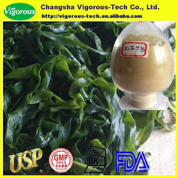 High quality Fucoxanthin/Fucoxanthin extract/fresh kelp