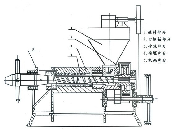 Cooking Oil Production Line Avocado Oil Extraction Machine