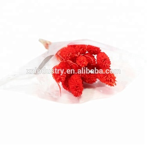New style best gift for valentines day gifts for valentines dried gem grass