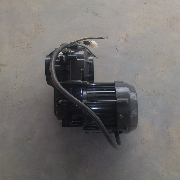 Qiangsheng electro rickshaw motor and gear in india for sale