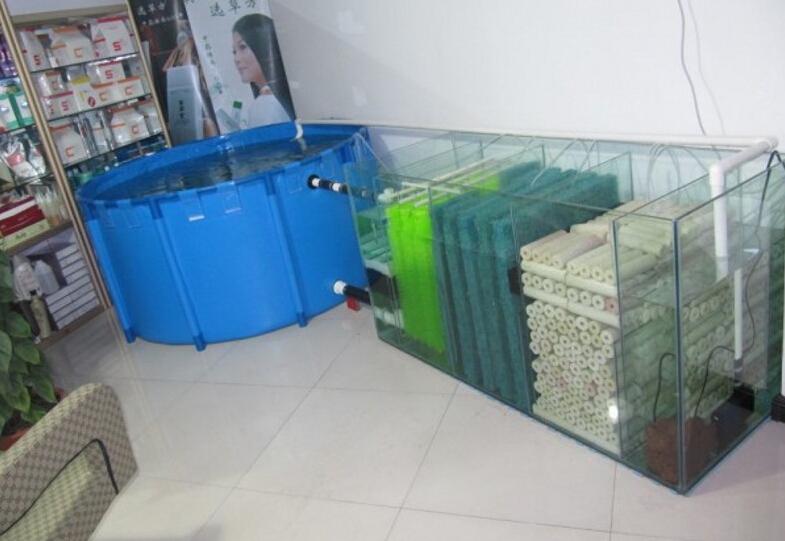 Durable dobr vel koi tanque mostrando pl stico tanque de for Piscicultura en tanques plasticos