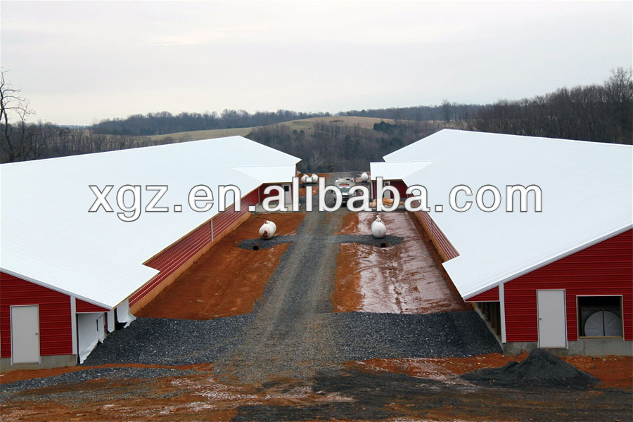 Broiler Construction Portable Poultry Shed