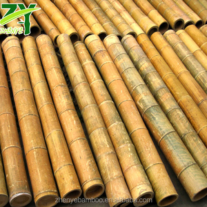 ZY-1011 Natural Bamboo Trunks Bamboo Trunks for Construction Use Bamboo Trunks for Outdoor Projects !!