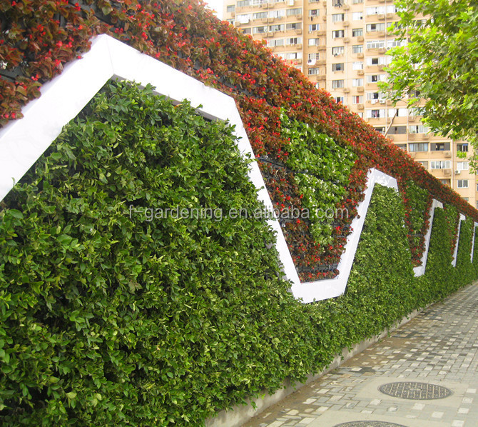 Elegant Vertical Garden Green System Decorative Green Wall Panel Flower Pot System  SL Y5012 Green Wall
