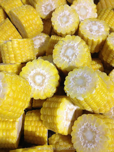 Frozen Super Sweet Corn Cob Cut healthy food good price high quality