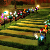 LED Outdoor Solar Garden Lights Multicolor Solar Power Lily Flowers Light for Patio Yard Decoration