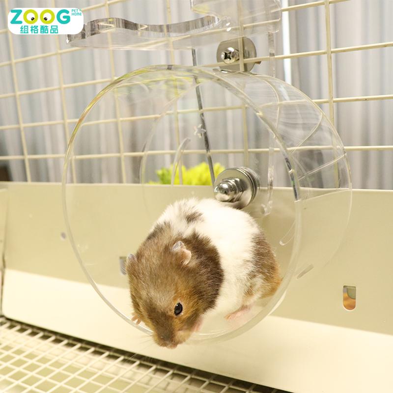 Long Haired Hamster Petsmart 42