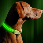 LED Halo Glow Night Light Up Perro for Blue Dog Cat Pet Collar with Free Waterproof in the Dark Usb Flashing Neon