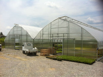 Gothic Arch Greenhouses On Sale