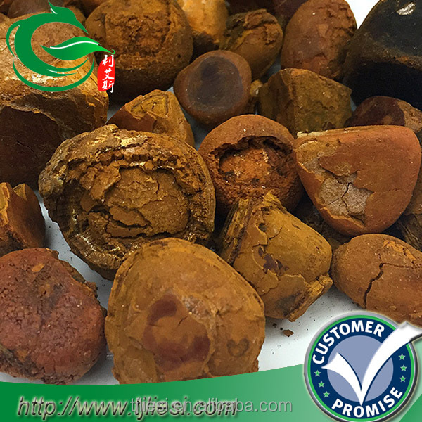 supply 2016 ox gallstones and cow bezoar with low price