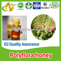 Certified organic polyfloral honey