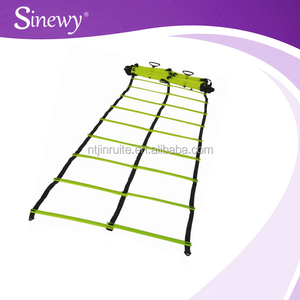 TOP double speed ladder 10 feet agility ladder set